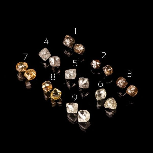 Raw Diamond Studs Rose Gold Catalogue